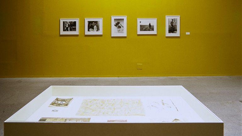 Exposici N Francisco Toledo