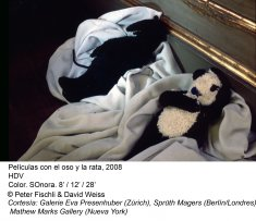Peter Fischli / David Weiss. ¿Son los animales personas?
