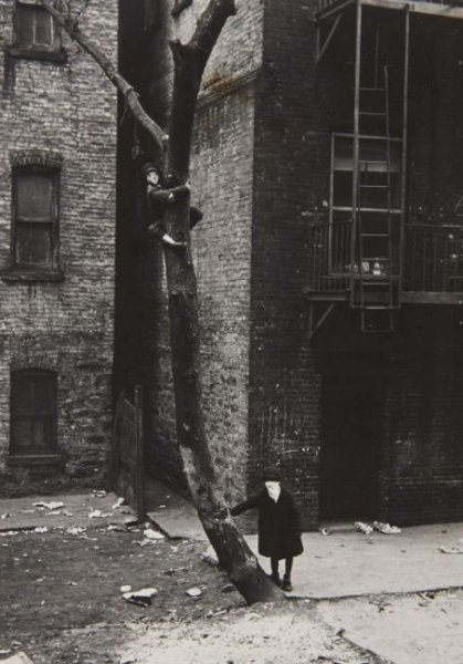 New York, c. 1942 (Kids with Masks in the Tree)