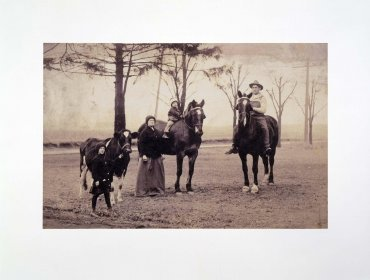 Family with Horses and Cow (Familia con caballos y vaca)