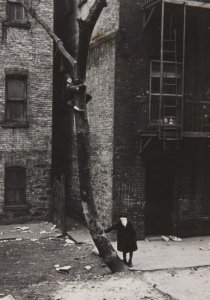 New York, c. 1942 (Kids with Masks in the Tree) (Nueva York, ca. 1942 [Niños con máscaras en el árbol])