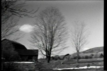 Tree* Movie