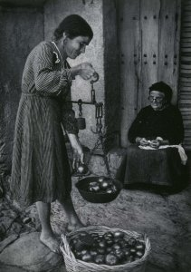Woman Selling Tomatoes (Mujer vendiendo tomates)